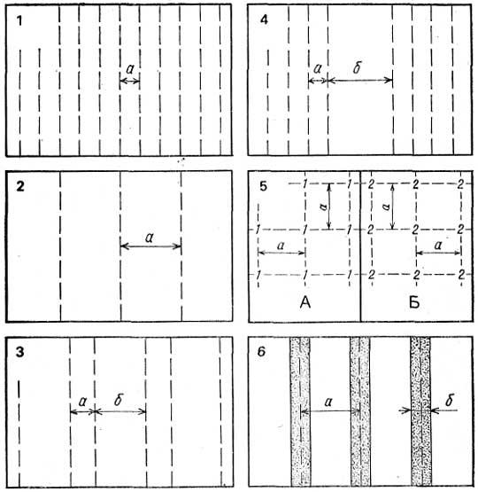 Рис. 1. Способы посева и посадки овощных культур: 1. Рядовой узкорядный: расстояние между рядами (а)-7—15 см 2 Ря...